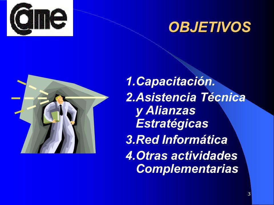 3 OBJETIVOS 1.Capacitación. 2.Asistencia Técnica y Alianzas Estratégicas 3.Red Informática 4.Otras actividades Complementarias