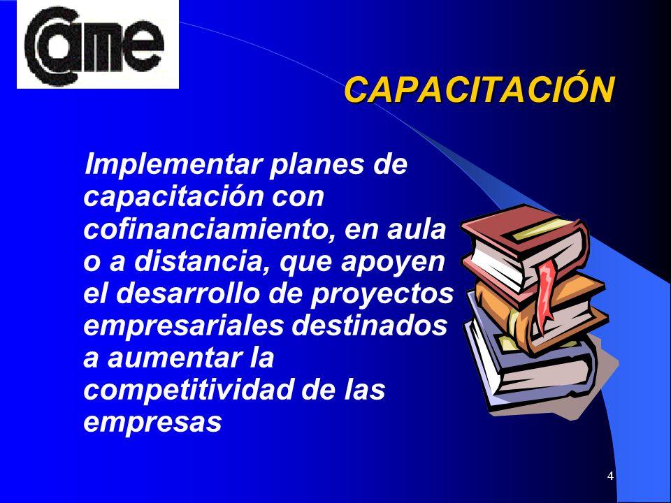 4 CAPACITACIÓN CAPACITACIÓN Implementar planes de capacitación con cofinanciamiento, en aula o a distancia, que apoyen el desarrollo de proyectos empr