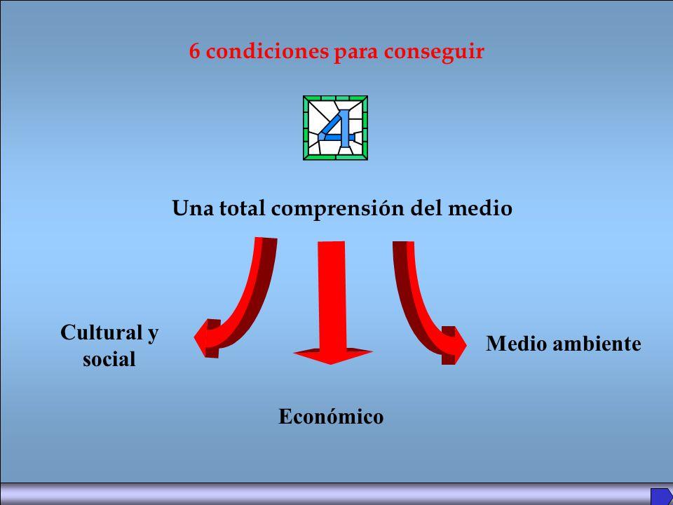 Una total comprensión del medio 6 condiciones para conseguir Cultural y social Económico Medio ambiente