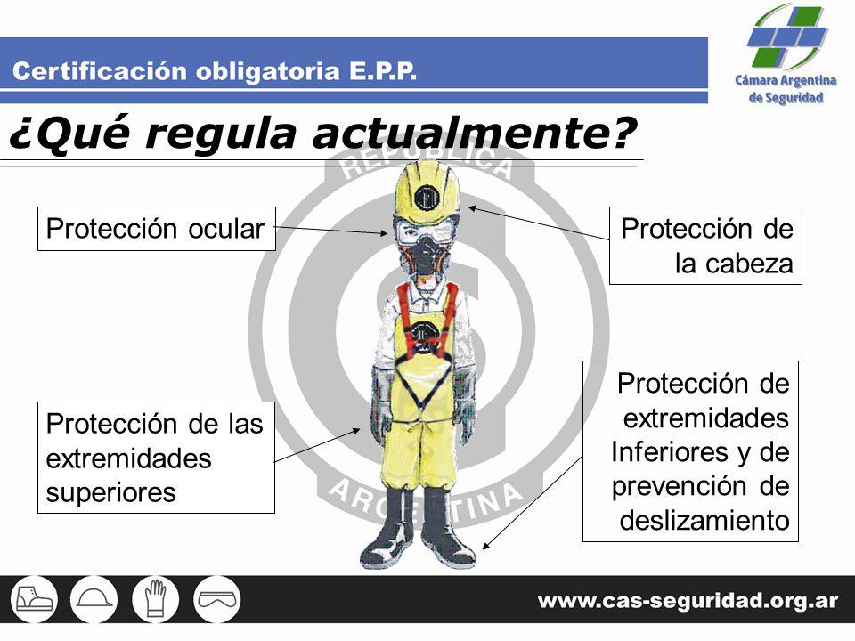 ¿Qué regula actualmente? Protección ocular Protección de las extremidades superiores Protección de la cabeza Protección de extremidades Inferiores y d