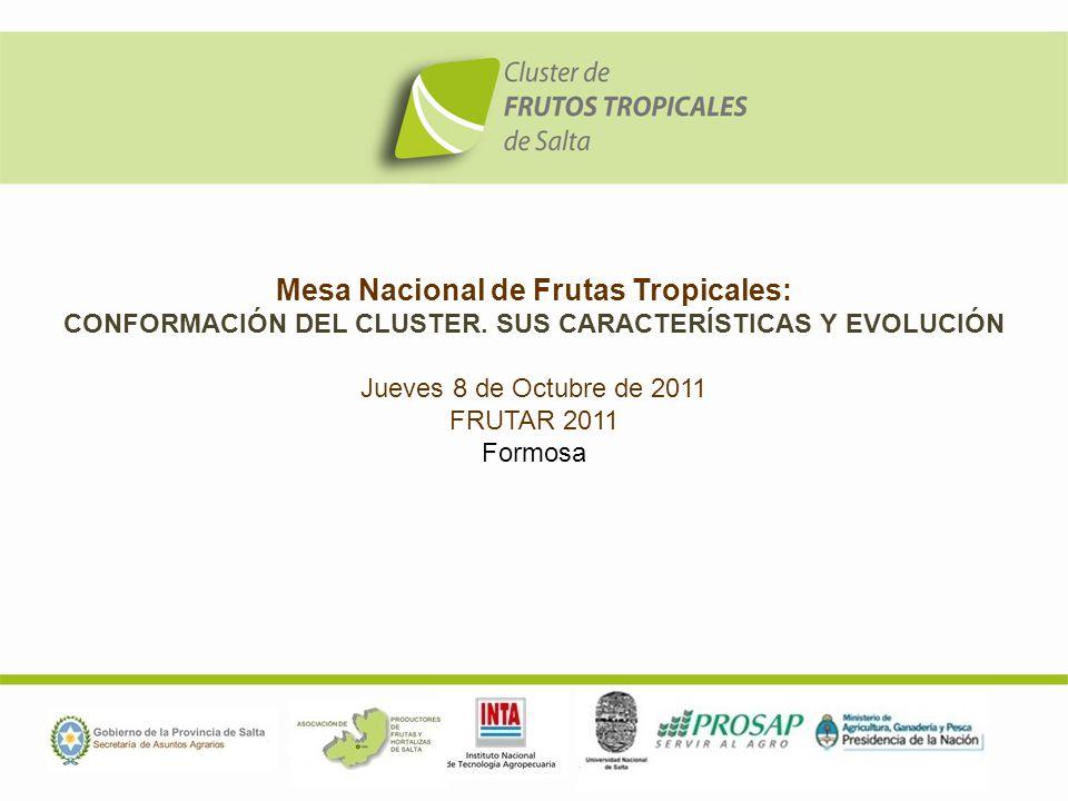 Mesa Nacional de Frutas Tropicales: CONFORMACIÓN DEL CLUSTER. SUS CARACTERÍSTICAS Y EVOLUCIÓN Jueves 8 de Octubre de 2011 FRUTAR 2011 Formosa