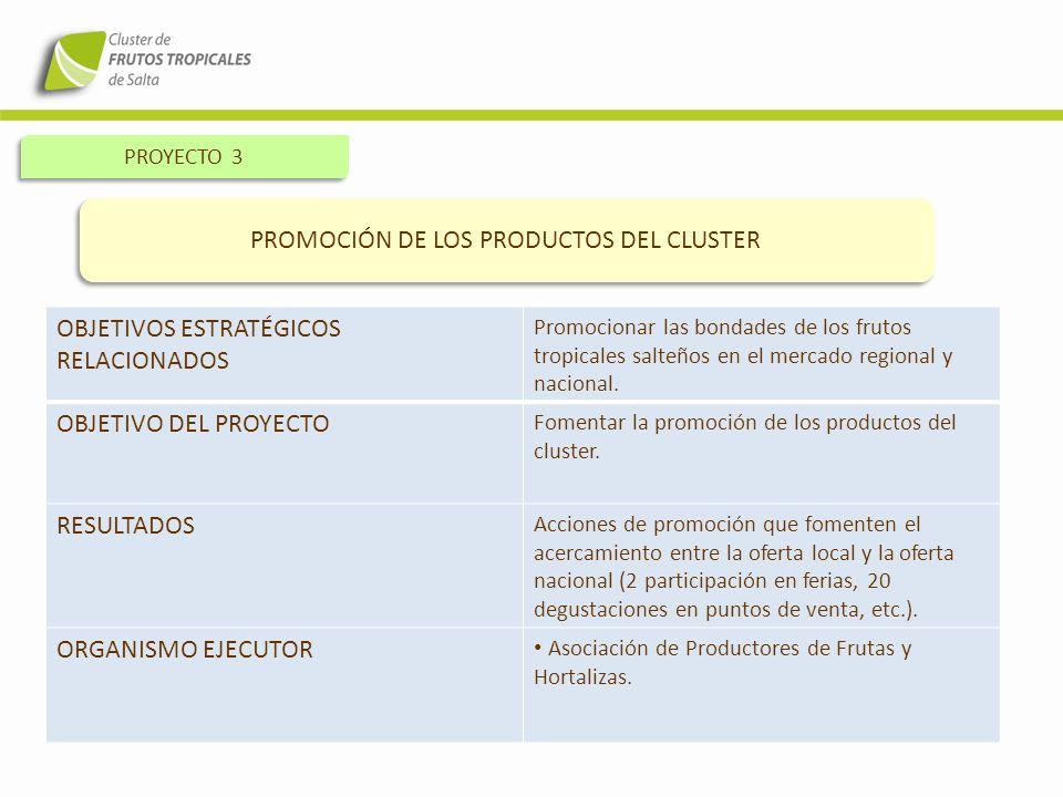 PROYECTO 3 PROMOCIÓN DE LOS PRODUCTOS DEL CLUSTER OBJETIVOS ESTRATÉGICOS RELACIONADOS Promocionar las bondades de los frutos tropicales salteños en el