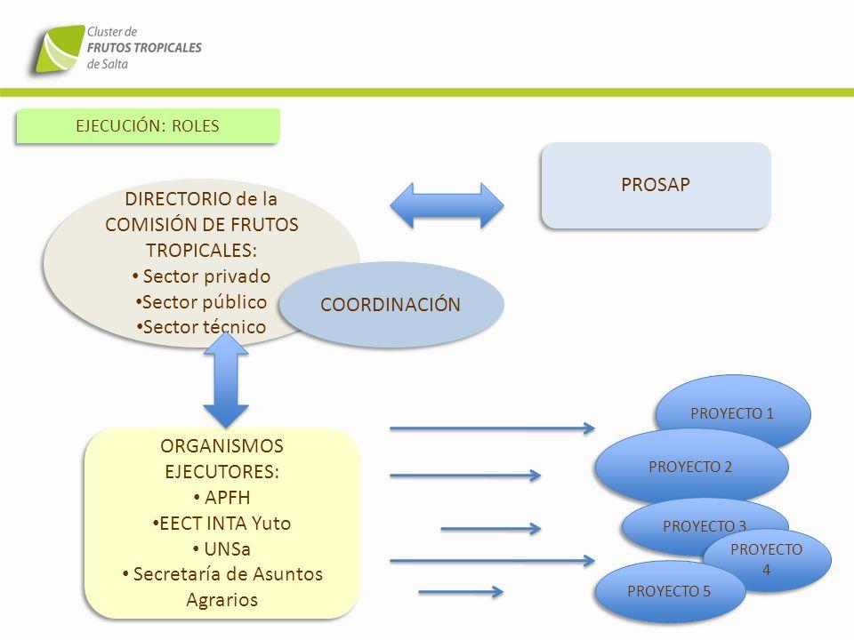 EJECUCIÓN: ROLES DIRECTORIO de la COMISIÓN DE FRUTOS TROPICALES: Sector privado Sector público Sector técnico DIRECTORIO de la COMISIÓN DE FRUTOS TROP