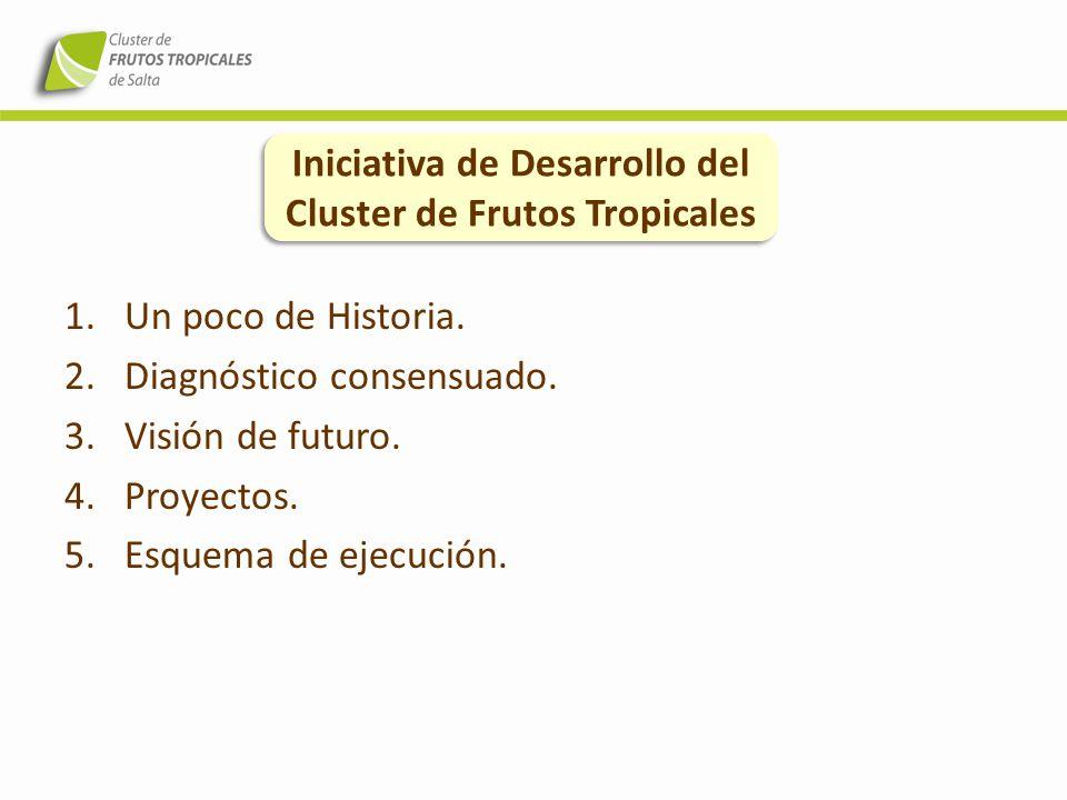 1.Un poco de Historia. 2.Diagnóstico consensuado. 3.Visión de futuro. 4.Proyectos. 5.Esquema de ejecución. Iniciativa de Desarrollo del Cluster de Fru