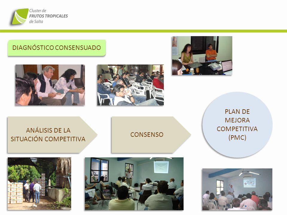 VISIÓN DE FUTURO VISIÓN SER RECONOCIDOS EN EL MERCADO NACIONAL COMO PRODUCTORES DE FRUTOS SALTEÑOS DE CALIDAD VISIÓN SER RECONOCIDOS EN EL MERCADO NACIONAL COMO PRODUCTORES DE FRUTOS SALTEÑOS DE CALIDAD MISIÓN GENERAR ESTRATEGIAS CONJUNTAS PARA FORTALECER Y POTENCIAR UNA ACTIVIDAD FRUTÍCOLA TROPICAL SALTEÑA COMPETITIVA Y SUSTENTABLE EN EL TIEMPO MISIÓN GENERAR ESTRATEGIAS CONJUNTAS PARA FORTALECER Y POTENCIAR UNA ACTIVIDAD FRUTÍCOLA TROPICAL SALTEÑA COMPETITIVA Y SUSTENTABLE EN EL TIEMPO