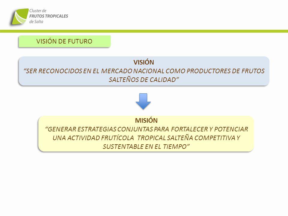 VISIÓN DE FUTURO VISIÓN SER RECONOCIDOS EN EL MERCADO NACIONAL COMO PRODUCTORES DE FRUTOS SALTEÑOS DE CALIDAD VISIÓN SER RECONOCIDOS EN EL MERCADO NAC