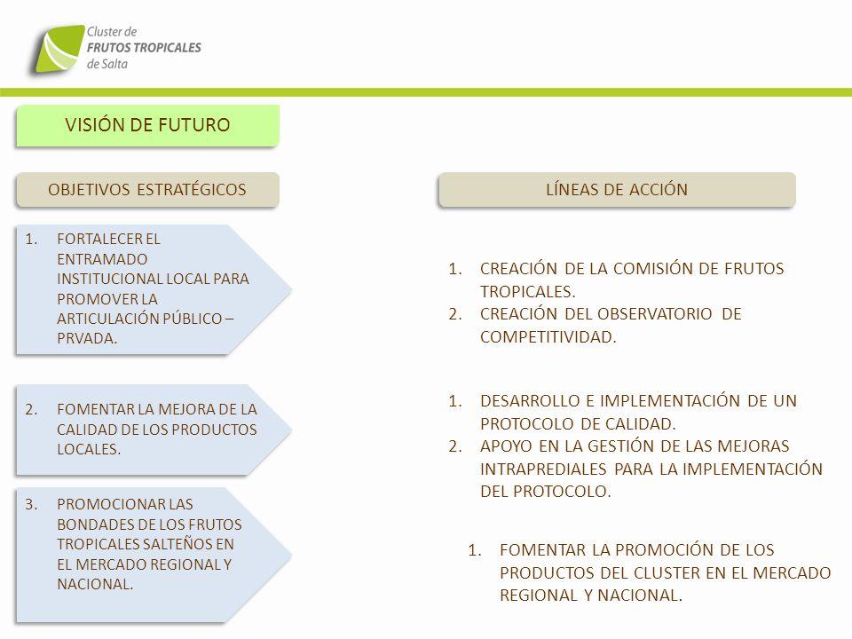 VISIÓN DE FUTURO 4.DESARROLLAR TECNOLOGÍA PARA LA PREVENCIÓN DE HELADAS Y EL INCREMENTO DE LA PRODUCTIVIDAD OBJETIVOS ESTRATÉGICOS LÍNEAS DE ACCIÓN 5.IMPLEMENTAR ACCIONES DE DIVERSIFICACIÓN PRODUCTIVA.