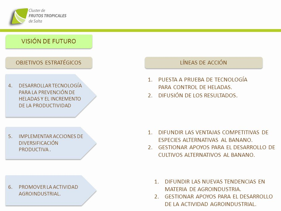 VISIÓN DE FUTURO 4.DESARROLLAR TECNOLOGÍA PARA LA PREVENCIÓN DE HELADAS Y EL INCREMENTO DE LA PRODUCTIVIDAD OBJETIVOS ESTRATÉGICOS LÍNEAS DE ACCIÓN 5.