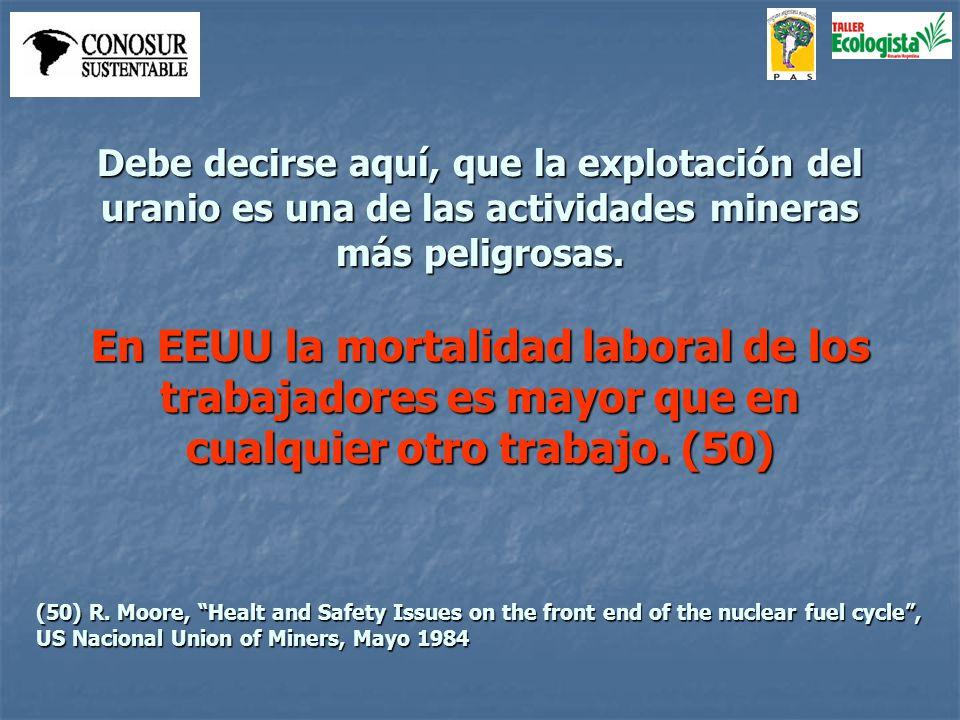 Los riesgos también afectan a los residentes cerca de las explotaciones mineras (51).