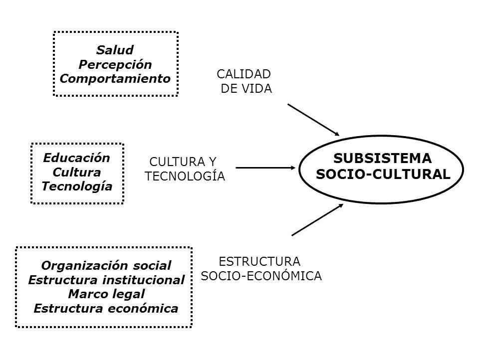 Salud Percepción Comportamiento Educación Cultura Tecnología Organización social Estructura institucional Marco legal Estructura económica CALIDAD DE