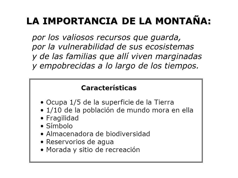 LA IMPORTANCIA DE LA MONTAÑA: por los valiosos recursos que guarda, por la vulnerabilidad de sus ecosistemas y de las familias que allí viven marginad