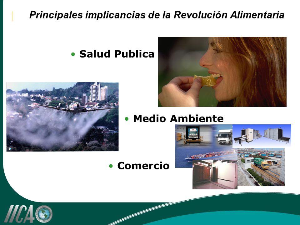 Principales implicancias de la Revolución Alimentaria Salud Publica Medio Ambiente Comercio