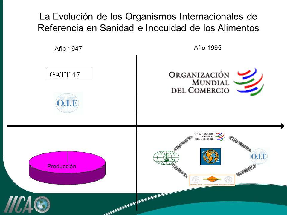 5 La Evolución de los Organismos Internacionales de Referencia en Sanidad e Inocuidad de los Alimentos Año 1947 Año 1995 GATT 47 Producción