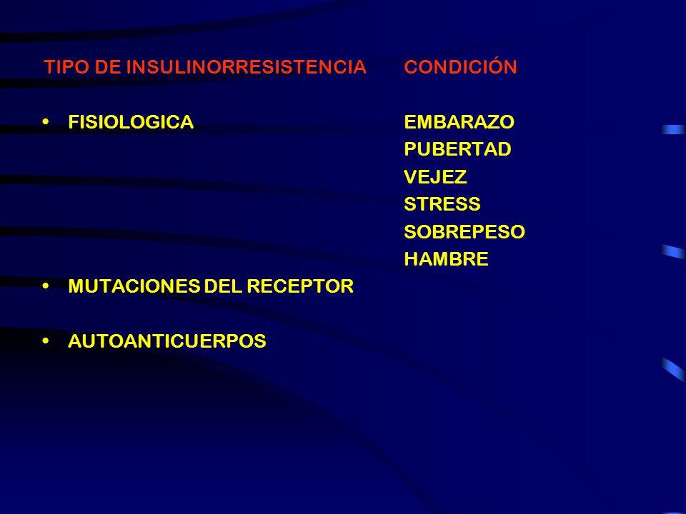 TIPO DE INSULINORRESISTENCIA PRIMARIA SECUNDARIA FISIOLOGICA CONDICIÓN DBT T2 ADELGAZAMIENTO UREMIA CIRROSIS ACROMEGALIA CUSHING FEOCROMOCITOMA GLUCAG
