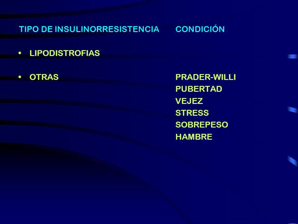 TIPO DE INSULINORRESISTENCIA FISIOLOGICA MUTACIONES DEL RECEPTOR AUTOANTICUERPOS CONDICIÓN EMBARAZO PUBERTAD VEJEZ STRESS SOBREPESO HAMBRE