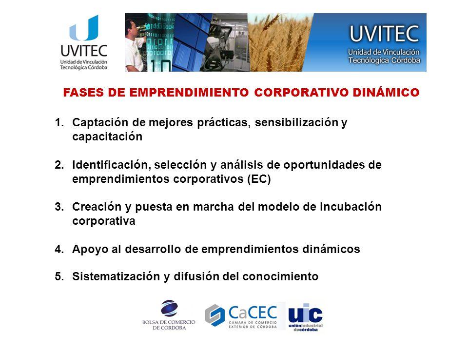 ¿Qué es Emprendimiento Corporativo.