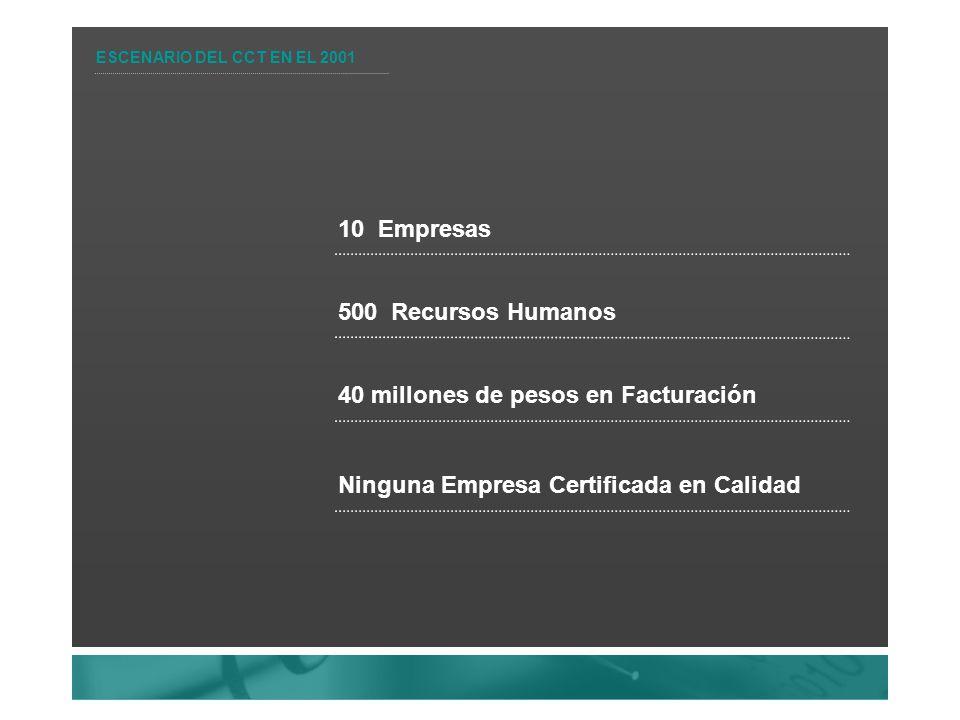 ESCENARIO DEL CCT EN EL 2001 10 Empresas 500 Recursos Humanos 40 millones de pesos en Facturación Ninguna Empresa Certificada en Calidad