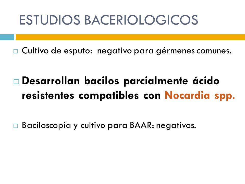 ESTUDIOS BACERIOLOGICOS Cultivo de esputo: negativo para gérmenes comunes. Desarrollan bacilos parcialmente ácido resistentes compatibles con Nocardia