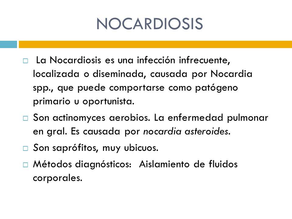 NOCARDIOSIS La Nocardiosis es una infección infrecuente, localizada o diseminada, causada por Nocardia spp., que puede comportarse como patógeno prima