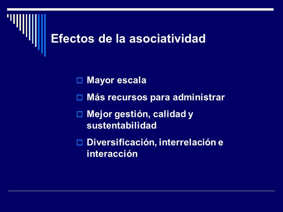 Efectos de la asociatividad Mayor escala Más recursos para administrar Mejor gestión, calidad y sustentabilidad Diversificación, interrelación e interacción