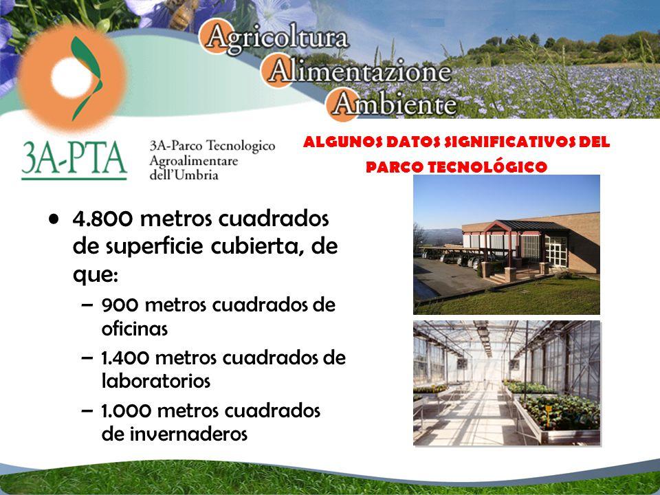 4.800 metros cuadrados de superficie cubierta, de que: –900 metros cuadrados de oficinas –1.400 metros cuadrados de laboratorios –1.000 metros cuadrados de invernaderos ALGUNOS DATOS SIGNIFICATIVOS DEL PARCO TECNOL ó GICO