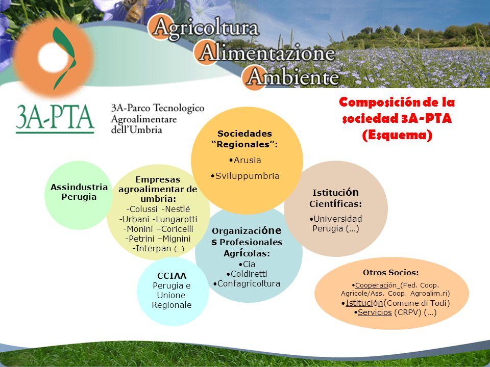 Sociedades Regionales: Arusia Sviluppumbria Istituci ón Cient í ficas: Universidad Perugia (…) Empresas agroalimentar de umbria: -Colussi -Nestlé -Urbani -Lungarotti -Monini –Coricelli -Petrini –Mignini -Interpan (…) Organizaci óne s Profesionales Agr í colas: Cia Coldiretti Confagricoltura CCIAA Perugia e Unione Regionale Assindustria Perugia Otros Socios: Cooperación (Fed.