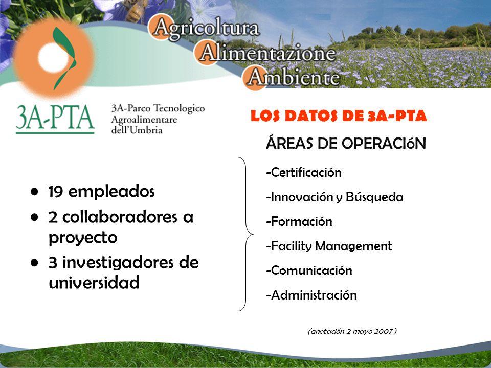 19 empleados 2 collaboradores a proyecto 3 investigadores de universidad LOS DATOS DE 3A-PTA -Certificación -Innovación y Búsqueda -Formación -Facility Management -Comunicación -Administración (anotación 2 mayo 2007 ) ÁREAS DE OPERACIóN