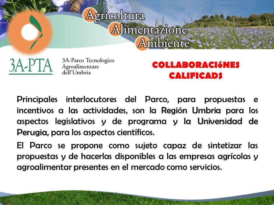 Regin Umbria la Universidad de Perugia, Principales interlocutores del Parco, para propuestas e incentivos a las actividades, son la Región Umbria para los aspectos legislativos y de programa y la Universidad de Perugia, para los aspectos científicos.