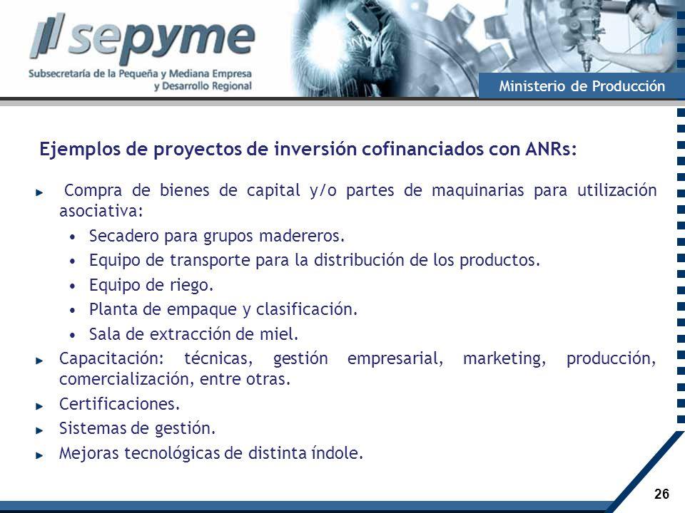 26 Ministerio de Producción Ejemplos de proyectos de inversión cofinanciados con ANRs: Compra de bienes de capital y/o partes de maquinarias para util