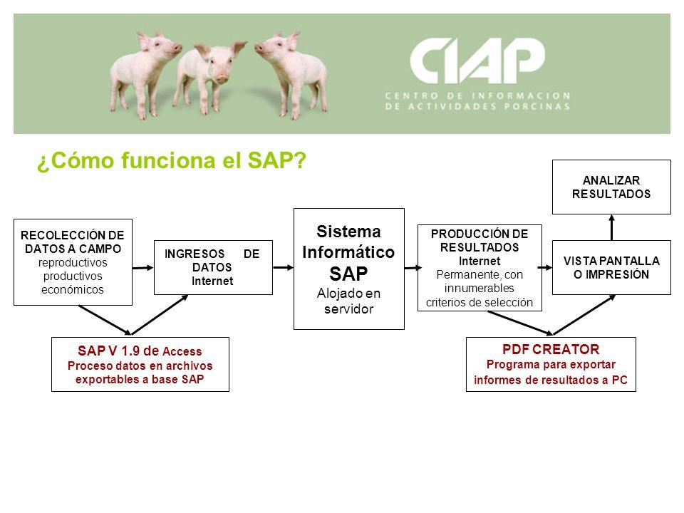 RECOLECCIÓN DE DATOS A CAMPO reproductivos productivos económicos Sistema Informático SAP Alojado en servidor SAP V 1.9 de Access Proceso datos en arc