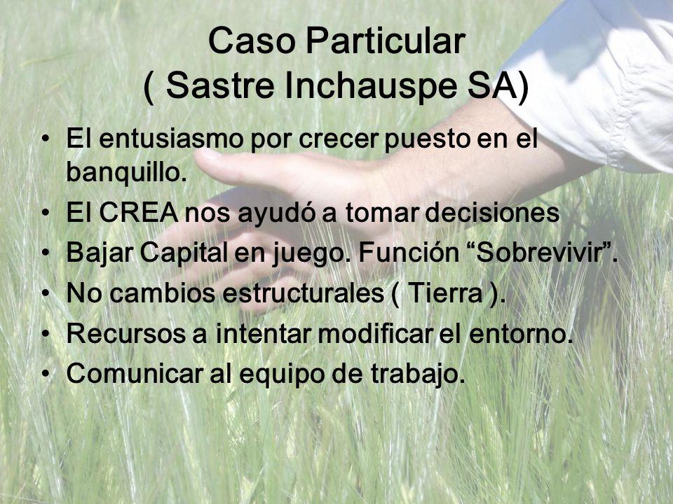 Caso Particular ( Sastre Inchauspe SA) El entusiasmo por crecer puesto en el banquillo. El CREA nos ayudó a tomar decisiones Bajar Capital en juego. F