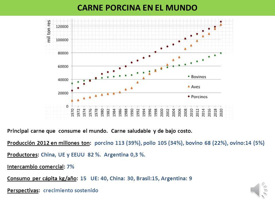 CARNE PORCINA EN ARGENTINA Consumo per cápita kg/año 2002 2011 Bovina 59 54 Aviar 18 39 Porcino 5 9 Ovino 2 2 Total 83 104 Cambio en los hábitos alimenticios de la población.