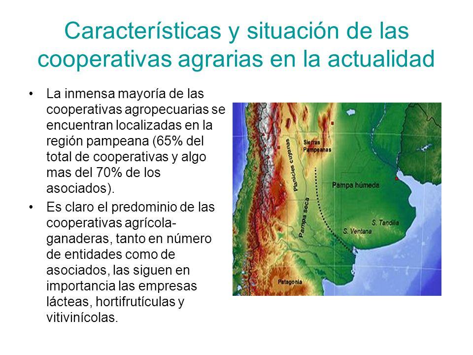 Características y situación de las cooperativas agrarias en la actualidad La inmensa mayoría de las cooperativas agropecuarias se encuentran localizadas en la región pampeana (65% del total de cooperativas y algo mas del 70% de los asociados).