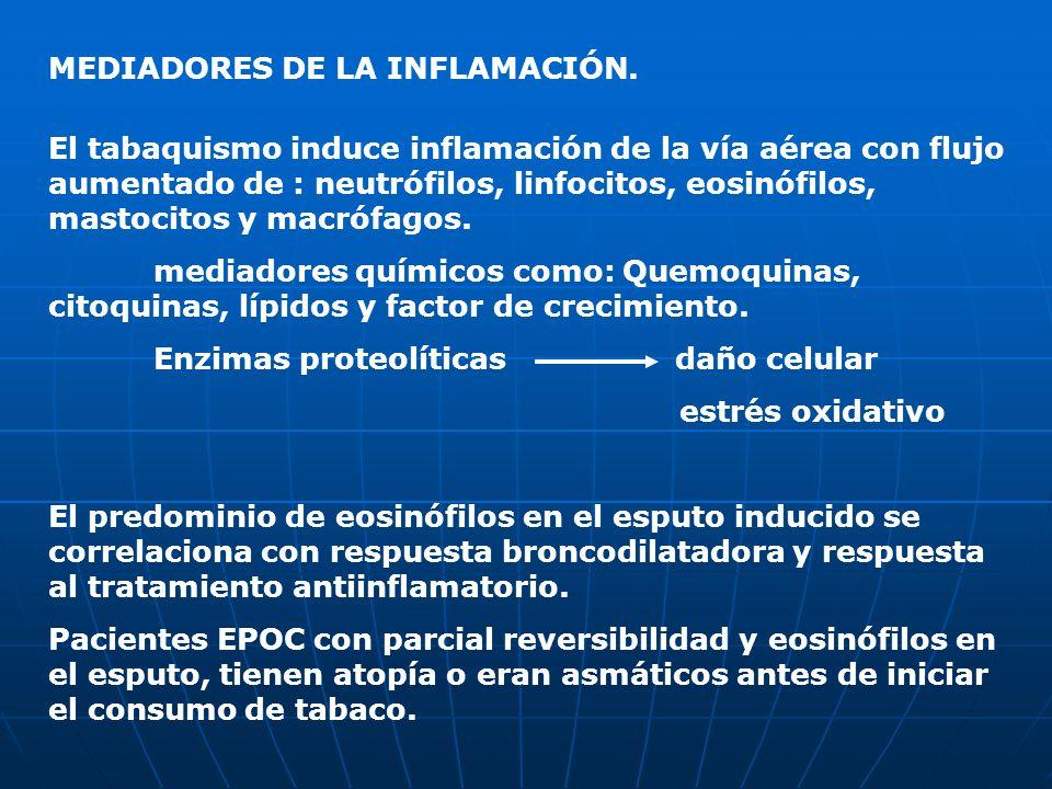MEDIADORES DE LA INFLAMACIÓN. El tabaquismo induce inflamación de la vía aérea con flujo aumentado de : neutrófilos, linfocitos, eosinófilos, mastocit