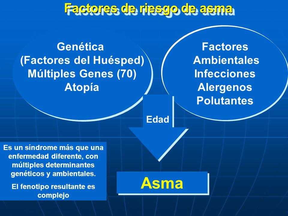 Factores de riesgo que llevan al desarrollo de asma Factores del huésped Predisposición genética Predisposición genética Atopía Atopía Hiperrespuesta de la vía aérea Hiperrespuesta de la vía aérea Género Género Raza/Etnia Raza/Etnia Factores del huésped Predisposición genética Predisposición genética Atopía Atopía Hiperrespuesta de la vía aérea Hiperrespuesta de la vía aérea Género Género Raza/Etnia Raza/Etnia Factores ambientales Alergenos interiores Alergenos interiores Alergenos exteriores Alergenos exteriores factores ocupacionales factores ocupacionales Tabaquismo Tabaquismo Polución ambiental Polución ambiental Infecciones respiratorias Infecciones respiratorias Factores socio-económicos Factores socio-económicos Tamaño de la familia Tamaño de la familia Dieta y drogas Dieta y drogas Obesidad Obesidad Infecciones parasitarias Infecciones parasitarias Factores ambientales Alergenos interiores Alergenos interiores Alergenos exteriores Alergenos exteriores factores ocupacionales factores ocupacionales Tabaquismo Tabaquismo Polución ambiental Polución ambiental Infecciones respiratorias Infecciones respiratorias Factores socio-económicos Factores socio-económicos Tamaño de la familia Tamaño de la familia Dieta y drogas Dieta y drogas Obesidad Obesidad Infecciones parasitarias Infecciones parasitarias