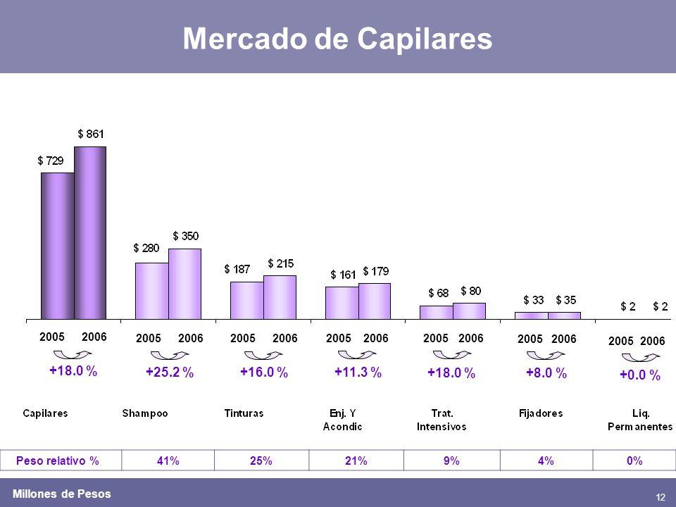 12 Mercado de Capilares 20052006 2005200620052006 +18.0 % +11.3 % +18.0 % Peso relativo %41%25%21%9%4%0% 20052006 +25.2 % 20052006 +8.0 % Millones de Pesos 20052006 +16.0 % 20052006 +0.0 %