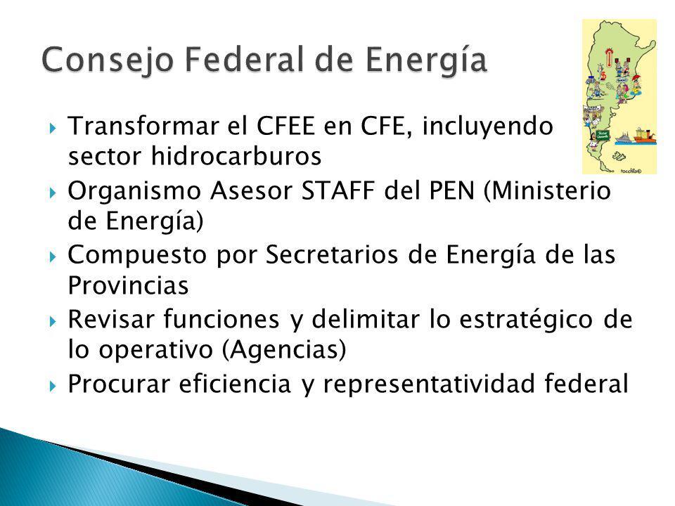 Transformar el CFEE en CFE, incluyendo sector hidrocarburos Organismo Asesor STAFF del PEN (Ministerio de Energía) Compuesto por Secretarios de Energía de las Provincias Revisar funciones y delimitar lo estratégico de lo operativo (Agencias) Procurar eficiencia y representatividad federal