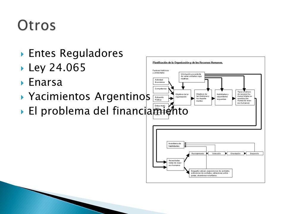 Entes Reguladores Ley 24.065 Enarsa Yacimientos Argentinos El problema del financiamiento