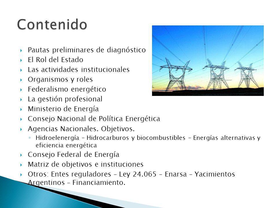 Pautas preliminares de diagnóstico El Rol del Estado Las actividades institucionales Organismos y roles Federalismo energético La gestión profesional Ministerio de Energía Consejo Nacional de Política Energética Agencias Nacionales.