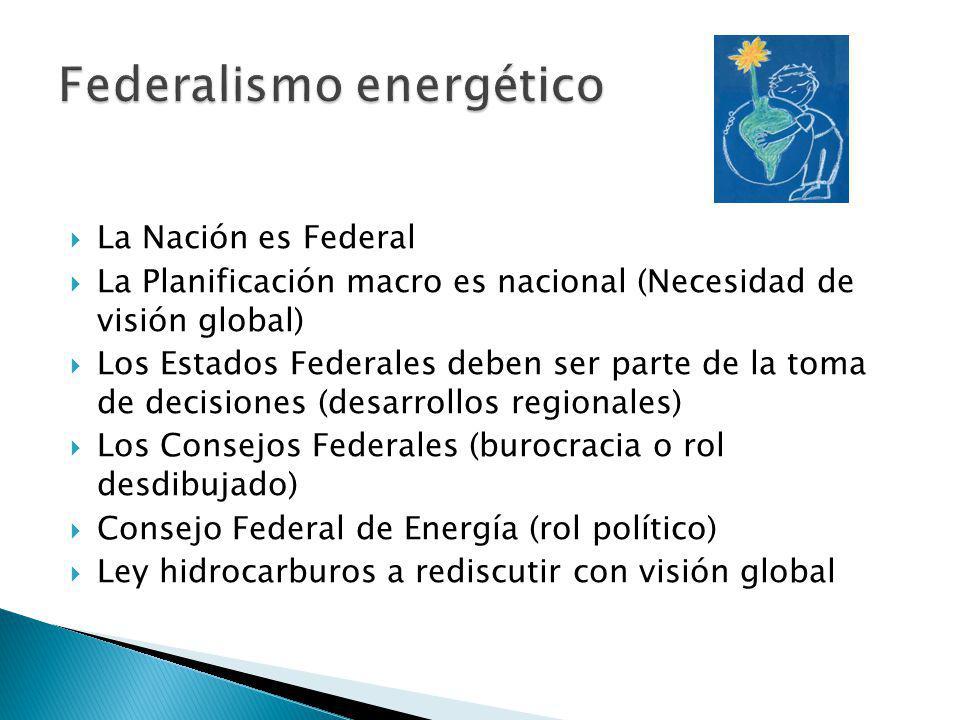 La Nación es Federal La Planificación macro es nacional (Necesidad de visión global) Los Estados Federales deben ser parte de la toma de decisiones (desarrollos regionales) Los Consejos Federales (burocracia o rol desdibujado) Consejo Federal de Energía (rol político) Ley hidrocarburos a rediscutir con visión global