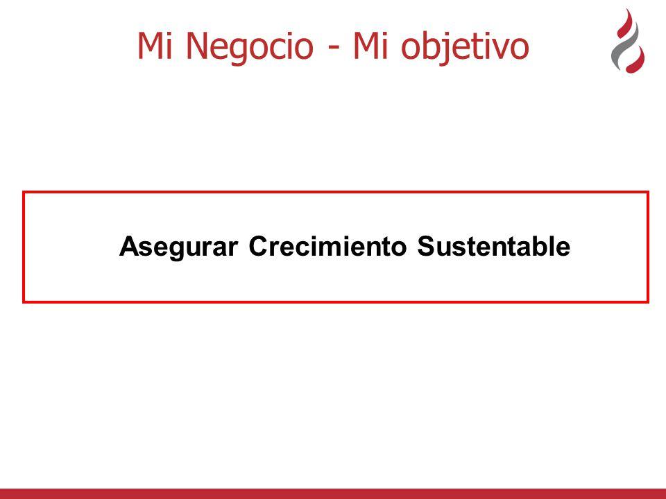 Mi Negocio - Mi objetivo Asegurar Crecimiento Sustentable