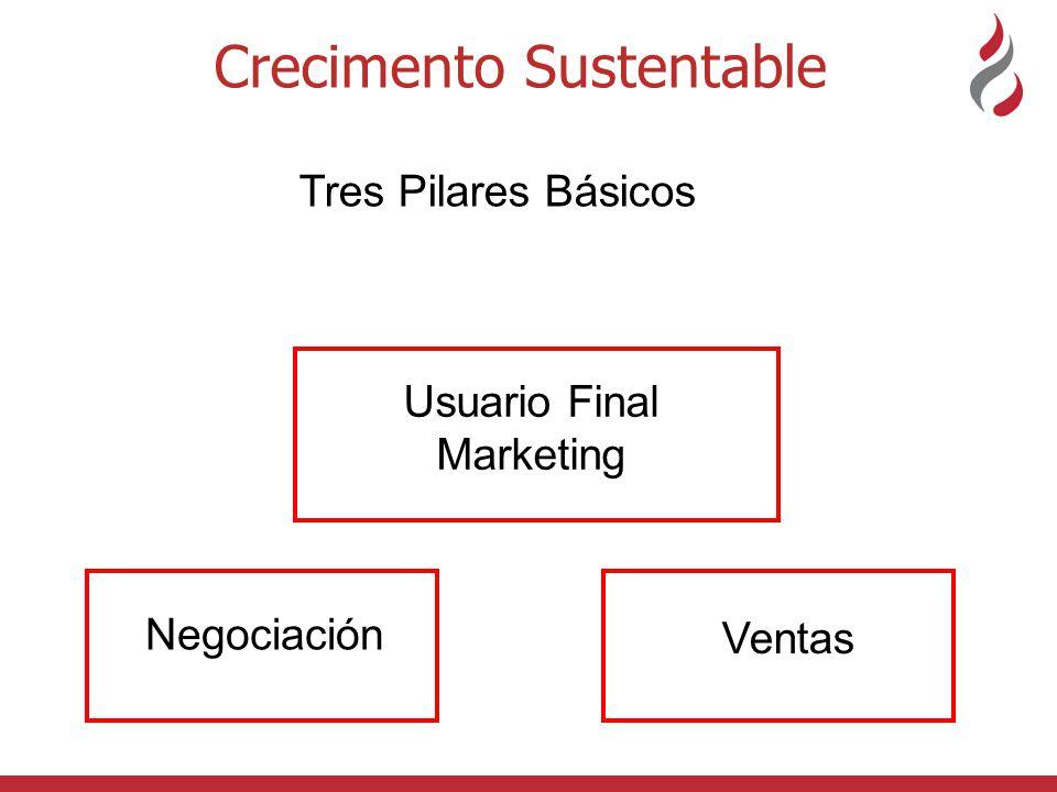 Crecimento Sustentable Negociación Usuario Final Marketing Tres Pilares Básicos Ventas
