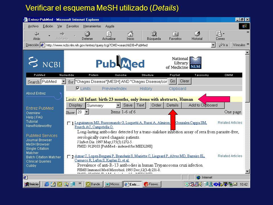 Verificar el esquema MeSH utilizado (Details)
