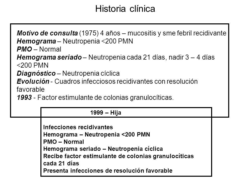 Historia clínica Motivo de consulta (1975) 4 años – mucositis y sme febril recidivante Hemograma – Neutropenia <200 PMN PMO – Normal Hemograma seriado – Neutropenia cada 21 días, nadir 3 – 4 días <200 PMN Diagnóstico – Neutropenia cíclica Evolución - Cuadros infecciosos recidivantes con resolución favorable 1993 - Factor estimulante de colonias granulocíticas.