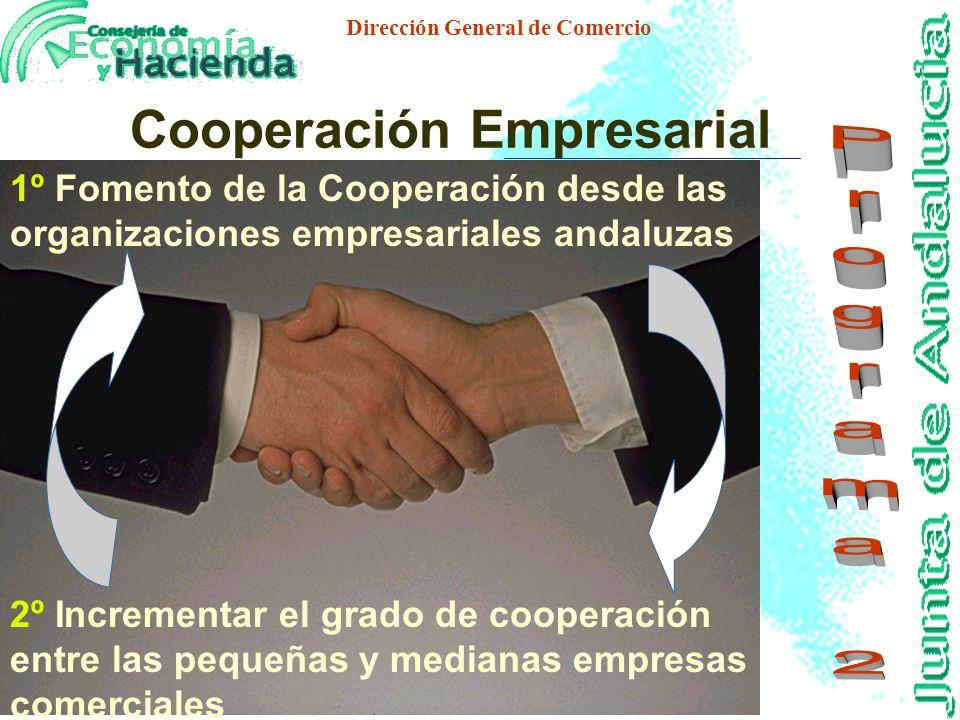 Dirección General de Comercio 1º Fomentar la incorporación de nuevos profesionales al sector comercial 2º Adecuar la dimensión física de los estableci