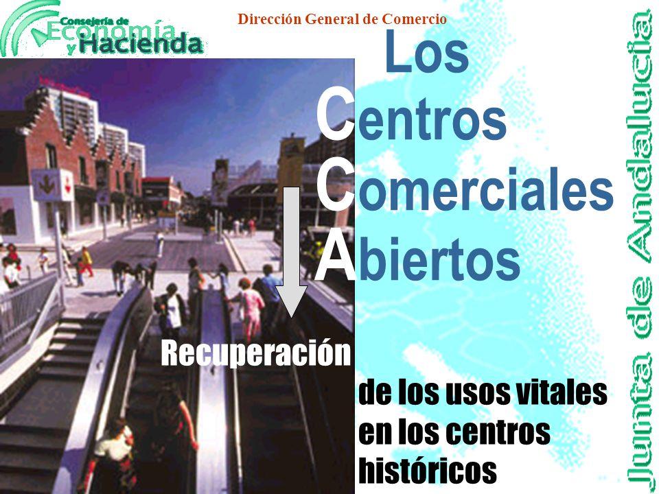 Dirección General de Comercio Dispersión de establecimientos Sobredotación de unas actividades frente a la escasez de otras Causas de la Crisis Falta