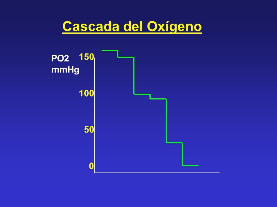 Cascada del Oxígeno PO2 mmHg 150 100 50 0