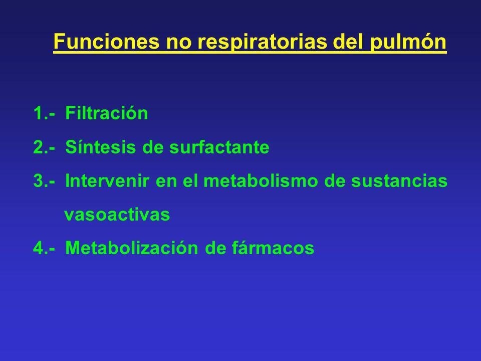Funciones no respiratorias del pulmón 1.- Filtración 2.- Síntesis de surfactante 3.- Intervenir en el metabolismo de sustancias vasoactivas 4.- Metabo