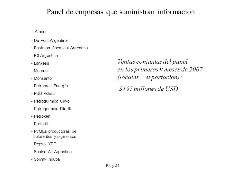 Panel de empresas que suministran información - Atanor - Du Pont Argentina - Eastman Chemical Argentina - ICI Argentina - Lanxess - Meranol - Monsanto - Petrobras Energía - PBB Polisur - Petroquímica Cuyo - Petroquímica Río III - Petroken - Profertil - PyMEs productoras de colorantes y pigmentos - Repsol YPF - Sealed Air Argentina - Solvay Indupa Ventas conjuntas del panel en los primeros 9 meses de 2007 (locales + exportación) : 3195 millones de USD Pág.