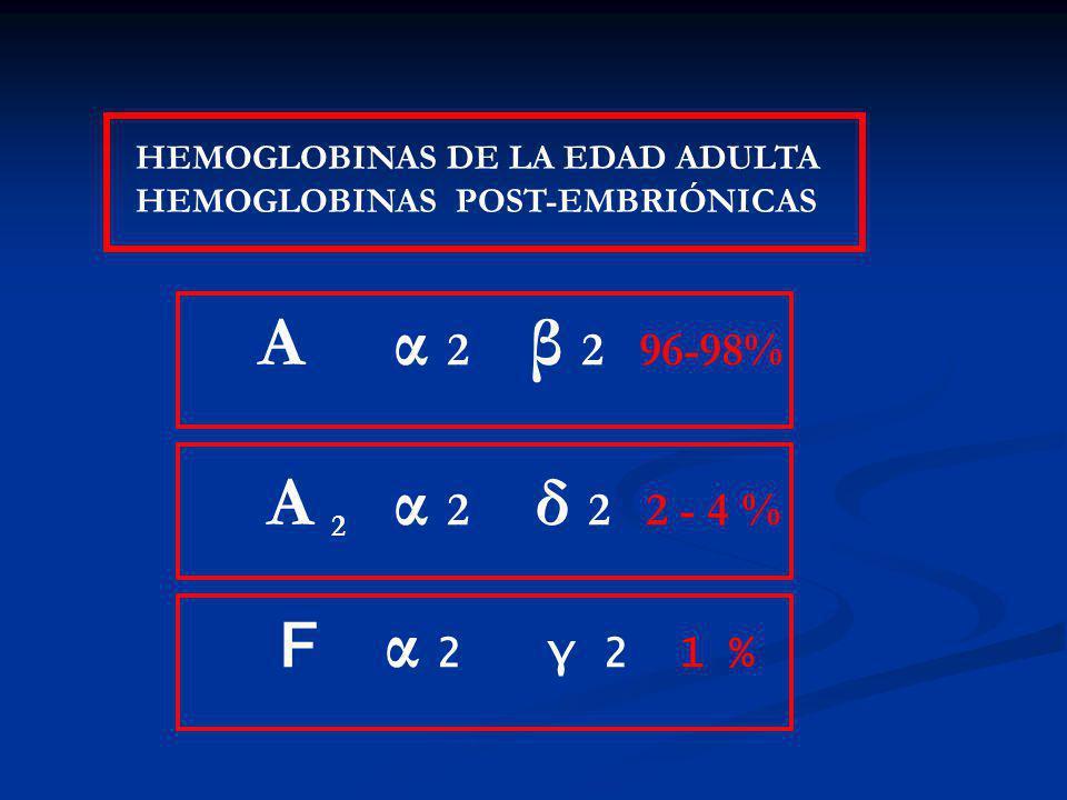 HEMOGLOBINAS DE LA EDAD ADULTA HEMOGLOBINAS POST-EMBRIÓNICAS A α 2 β 2 96-98% A 2 α 2 δ 2 2 - 4 % F α 2 γ 2 1 %